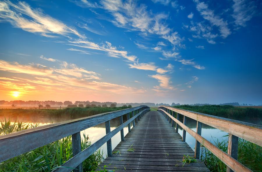 Casas De Férias Em Orlando: 5 Passos Para Ter A Sua